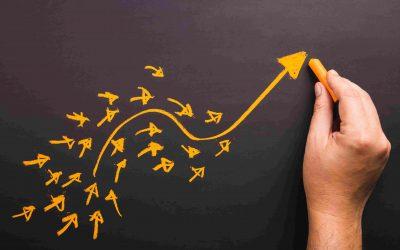 La relazione tra innovazione e conoscenza, una sfida per il management delle pmi